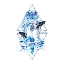 Album-Cover-1040px-150dpi--01